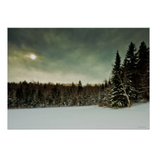 Nice hike over frozen lake in state of Vermont Poster