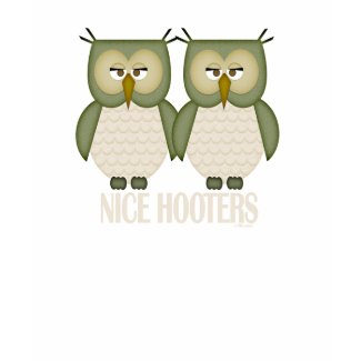 Nice Hooters shirt