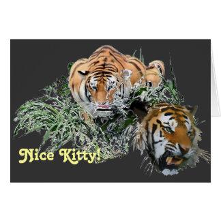 Nice Kitty! Card