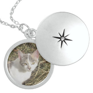 Nice Kitty Locket Necklace