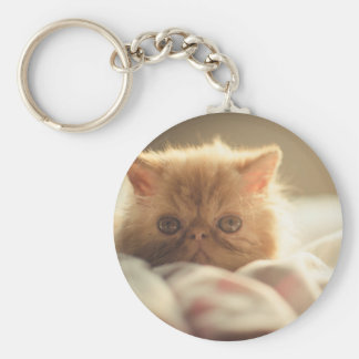 Nice kitty stay warm keychain