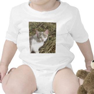Nice Kitty Baby Bodysuits
