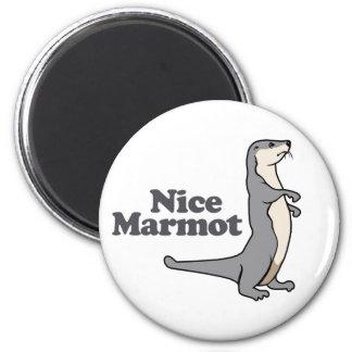 Nice Marmot ferret Fridge Magnets
