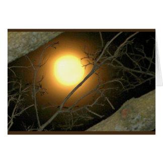 Nice Moon On Your Birthday! Card
