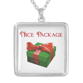 Nice Package Christmas Present Jewelry