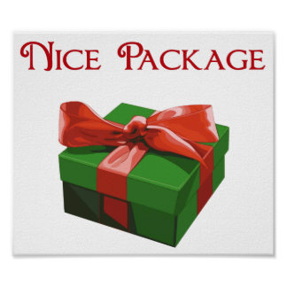 Nice Package Christmas Present Poster