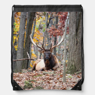 Nice Photo of a Bull Elk resting in the fall. Drawstring Bag