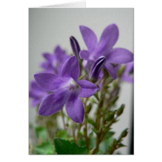 Nice Purple Flowers Card