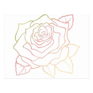 Nice Rose Flower in Pink Ombre, Rose Flower giftt Postcard