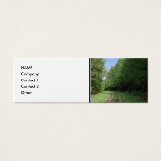 Nice scenic view of a pathway and trees. mini business card