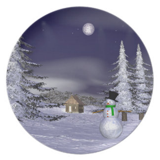 Nice snowman in the night party plate