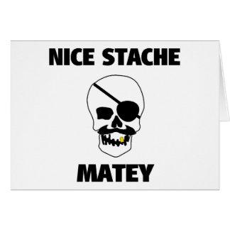 Nice Stache Matey Pirate Skull Card