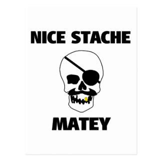 Nice Stache Matey Pirate Skull Postcard