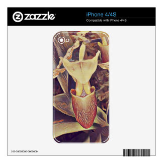 Nice Vintage Looking Slipper Orchid. Skin For iPhone 4S