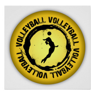 Nice Volleyball  Seal (Female) Poster