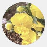 Nice Yellow Flower In Garden Round Stickers