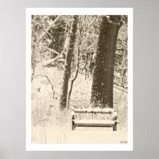 Nichols Arboretum #2 print