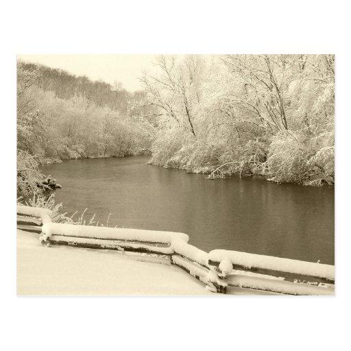 Nichols Arboretum Postcard