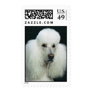 Nick_A Postage Stamps