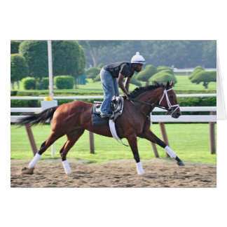 Nick Bush and Todd Pletcher Workouts Cards