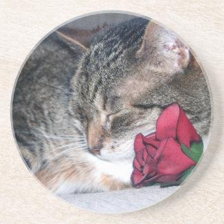 Nicky & A Rose Coaster