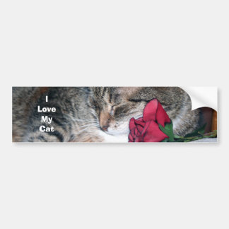 Nicky & A Rose - I Love My Cat Bumper Sticker Car Bumper Sticker