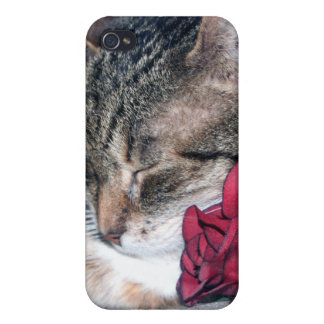 Nicky & A Rose  iPhone 4/4S Cases