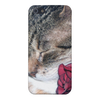 Nicky & A Rose iPhone 4 Case