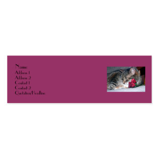 Nicky & A Rose Profile Card Double-Sided Mini Business Cards (Pack Of 20)