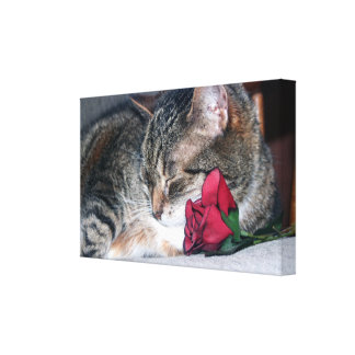 Nicky & A Rose Wrapped Canvas