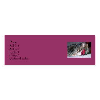 Nicky y una tarjeta color de rosa del perfil plantillas de tarjetas personales