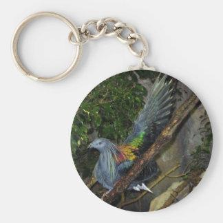 Nicobar Pigeon Wave Keychain