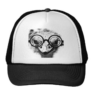 Nicolaus the ostrich in black & white graphic hats