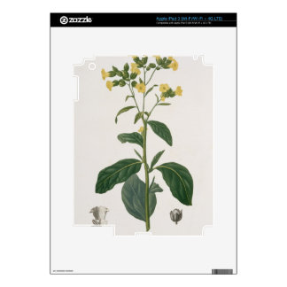 Nicotiana from 'Phytographie Medicale' by Joseph R iPad 3 Decals