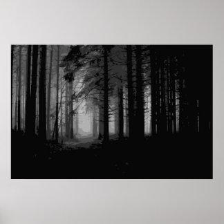 Niebla 7 del bosque póster