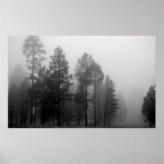Niebla de Arizona Poster