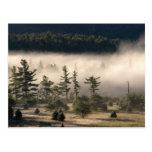 Niebla de la mañana en el Adirondacks 4 Tarjeta Postal