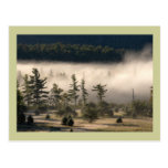 Niebla de la mañana en el Adirondacks Postal
