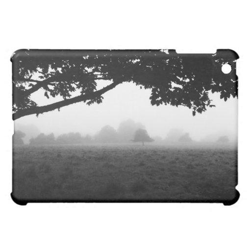 Niebla de la mañana que emerge de árboles