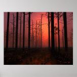 Niebla de la puesta del sol impresiones