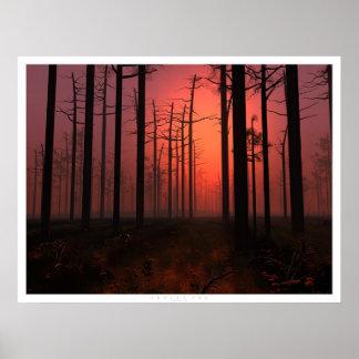 Niebla de la puesta del sol póster