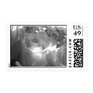 Niebla de septiembre sellos postales