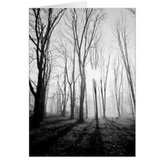 Niebla del bosque tarjeta de felicitación