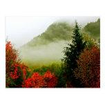 Niebla del camino de Dodge (brillante) Postales