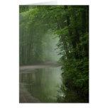 Niebla en el bosque tarjeta