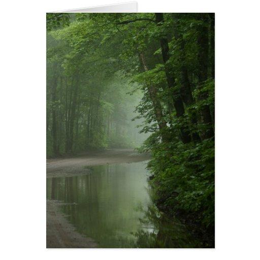 Niebla en el bosque tarjeta de felicitación