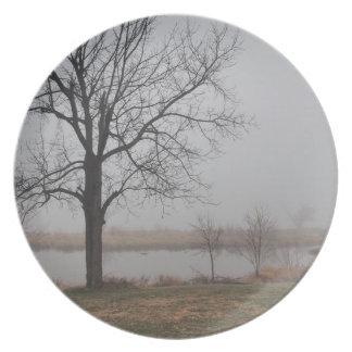 Niebla en la madrugada platos de comidas