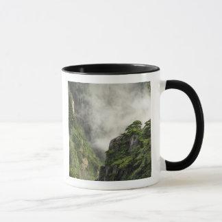 Niebla entre los picos y los valles del Gran Cañón