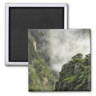 Niebla entre los picos y los valles del Gran Cañón Imán Cuadrado