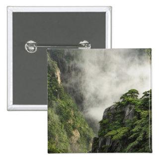 Niebla entre los picos y los valles del Gran Cañón Pin Cuadrado